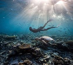 freediving_apnoe_tauchen