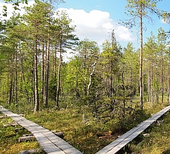 naturlehrpfad_natural_trail